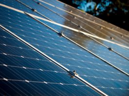 Japanese company Kiwapower to launch solar projects in Mexico